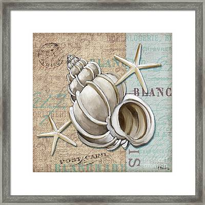 Linen Shells Iv Framed Print by Paul Brent
