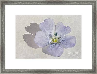 Linen Watercolour Framed Print by John Edwards