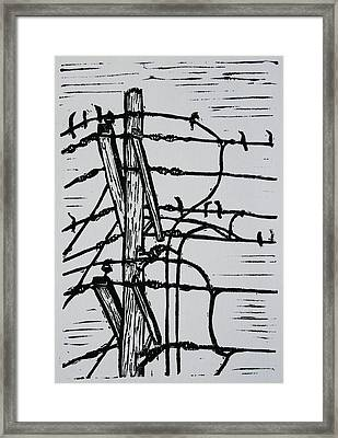 Lines And Birds Framed Print