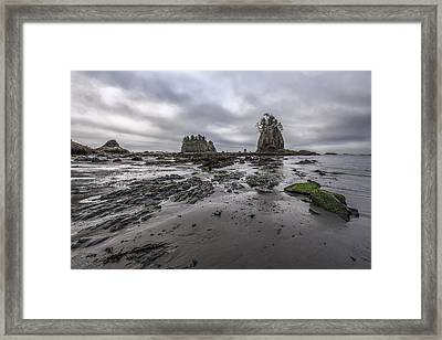 Lines At The Shore Framed Print by Jon Glaser