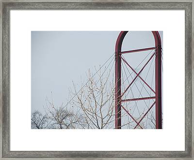 Lines Lines Lines Everywhere Framed Print by Tina M Wenger