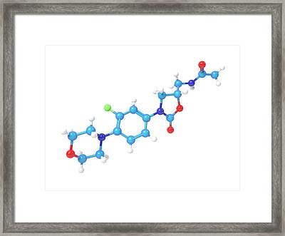 Linezolid Antibiotic Molecule Framed Print by Indigo Molecular Images