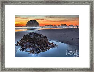 Lining Up For The Shot Framed Print by Adam Jewell