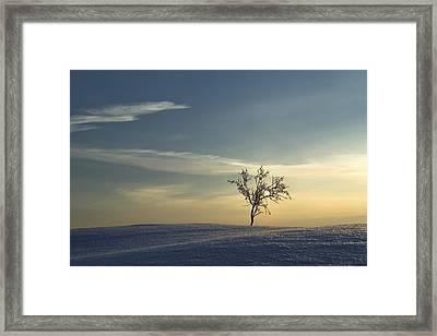 Linnansaari Nationalpark Framed Print