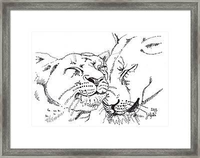 Lion And Cub Framed Print by John Keaton
