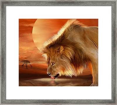 Lion At Sunset Framed Print