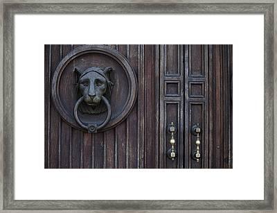 Lion Door Framed Print