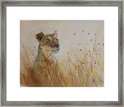 Lion In The Weeds Framed Print