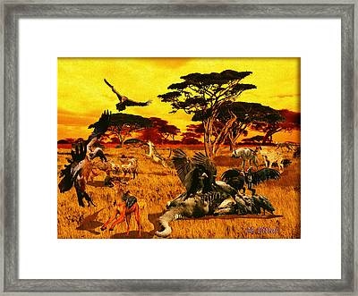Lion Kill Morning After'98 Framed Print