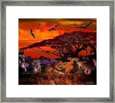 Lion Kill'98 Framed Print