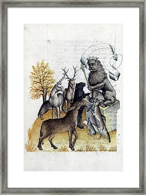 Lion, King Of Beasts Framed Print by Granger