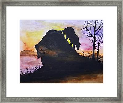 Lion Framed Print by Laneea Tolley