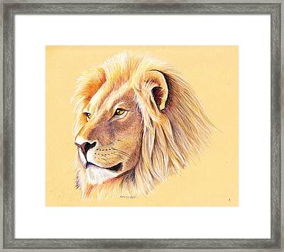 Lion Framed Print by Mary Mayes