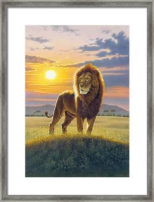 Lion Framed Print by MGL Studio - Chris Hiett