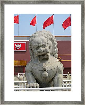 Lion Framed Print by Michael Fitzpatrick