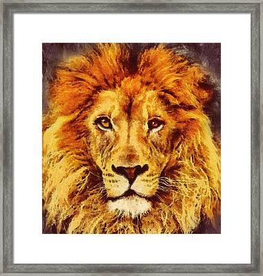 Lion Of Africa Framed Print by Georgiana Romanovna