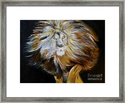 Lion Of Judah Framed Print by Amanda Dinan