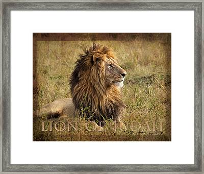 Lion Of Judah Framed Print by June Jacobsen