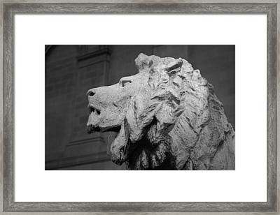Lion Of The Art Institute Chicago B W Framed Print by Steve Gadomski