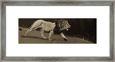 Lion Sketch Framed Print by Aaron Blaise