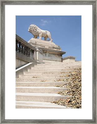 Lion Tuileries Garden Paris Framed Print by Jeremy Voisey