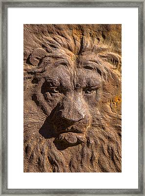 Lion Wall Framed Print by Garry Gay