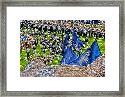Lion Watching The Entrance Framed Print