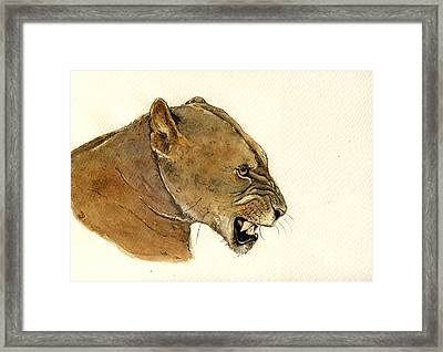 Lioness Framed Print by Juan  Bosco