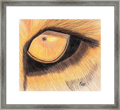 Lions Eye Framed Print by Bav Patel