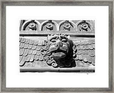 Lions Head Framed Print by Carsten Reisinger