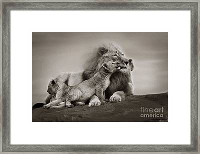 Framed Print featuring the photograph Lions In Freedom by Christine Sponchia