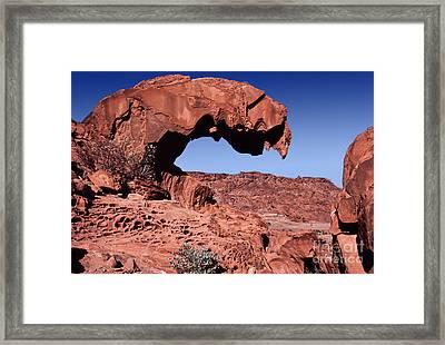 Lion's Jaw Rock Namibia Framed Print by Liz Leyden