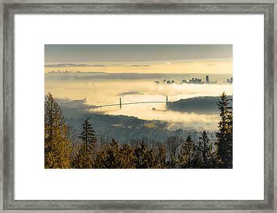 Lions Sea Fog Framed Print by Lee Buckley