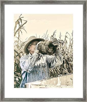 Liquid Corn Framed Print