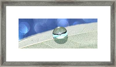 Liquid Drop Framed Print