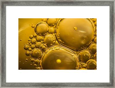 Liquid Gold II Framed Print by Petra Cat