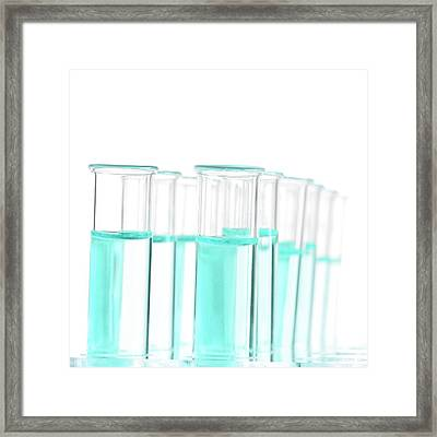 Liquid In Test Tubes In A Rack Framed Print