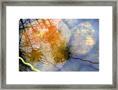 Liquid Light Stone Framed Print