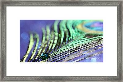 Liquid Peacock Framed Print