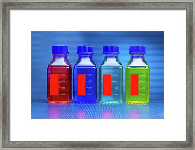 Liquids In Bottles Framed Print by Wladimir Bulgar