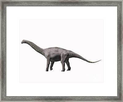 Lirainosaurus Astibae, Late Cretaceous Framed Print by Nobumichi Tamura