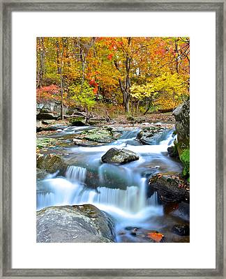 Listen Can You Hear It Framed Print by Frozen in Time Fine Art Photography