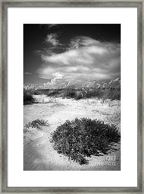 Listen To The Slience Framed Print