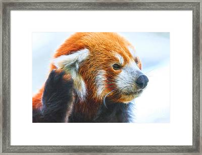 Listening Red Panda Framed Print