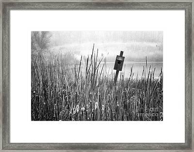 Listing Framed Print by Fred Lassmann
