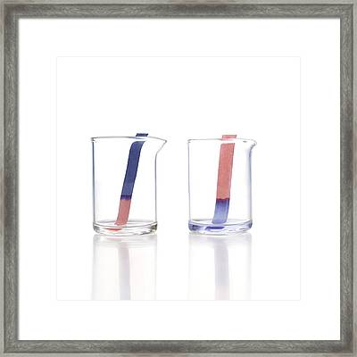 Litmus Paper Framed Print by Science Photo Library