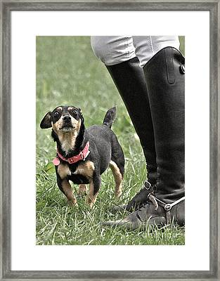 Little And Large In Colour Framed Print
