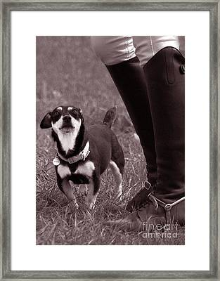 Little And Large Framed Print