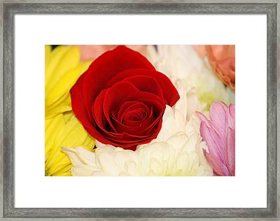 Framed Print featuring the photograph Little Angel by The Art Of Marilyn Ridoutt-Greene