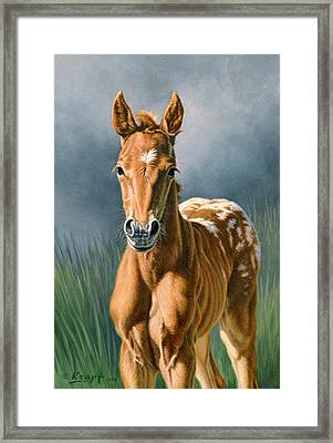Little Appy Framed Print by Paul Krapf
